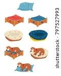 dog bed vector | Shutterstock .eps vector #797527993