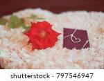 "love present ""neck let"" in a... | Shutterstock . vector #797546947"