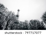 small lighthouse tower in a... | Shutterstock . vector #797717077