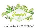 rhombus tropical frame ... | Shutterstock .eps vector #797788063