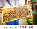 beekeeper is holding up wooden... | Shutterstock . vector #797831407