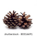 two coupled cones on a white... | Shutterstock . vector #80316691