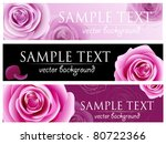 Stock vector blossom roses vector background 80722366