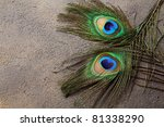two peacock feathers for