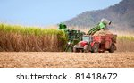 Sugar Cane Harvest In Tropical...