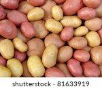 harvested potato tubers...   Shutterstock . vector #81633919