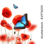 Exotic Butterfly On Poppy...