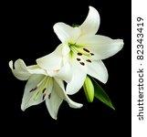 White Lilies On A Black...