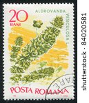 Small photo of ROMANIA - CIRCA 1966: stamp printed by Romania, shows Marine Flora, Aldrovanda vesiculosa, circa 1966