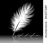 white feather pen drawing ... | Shutterstock .eps vector #84207289