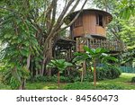 Tropical Tree House