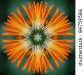 flower mandala in drops of water | Shutterstock . vector #84759586