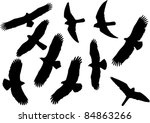Set Of Vector Silhouettes Of...