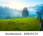 Misty Daybreak In Summer...