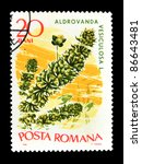 "Small photo of ROMANIA - CIRCA 1966: A stamp printed in Romania shows aquatic plant with the inscription ""Aldrovanda vesiculosa"" from the series ""Aquatic Flora"", circa 1966"
