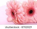 gerber | Shutterstock . vector #8702029