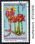 Small photo of GABON - CIRCA 1969: stamp printed by Gabon, shows Aframomum Polyanthum, circa 1969