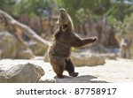 Stock photo great happy dancing bear 87758917