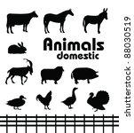 vector domestic animals... | Shutterstock .eps vector #88030519