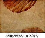 lovely brown background image... | Shutterstock . vector #8856079