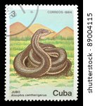 Small photo of CUBA - CIRCA 1984: A Stamp printed in CUBA shows image of a alsophis cantherigerus, from the series, circa 1984