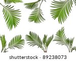 Collection Set Of Leaves Of...