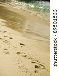 footprints on the sand | Shutterstock . vector #89501533