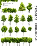 Trees   Vector Nature...