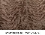 Reptile Leather Texture...