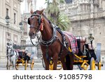 Horse Carriage In Front Of...