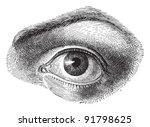 human eye   vintage... | Shutterstock .eps vector #91798625