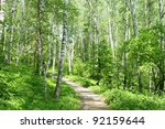 Spring Russian Forest
