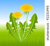 dandelion herb on spring meadow | Shutterstock .eps vector #92231995