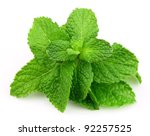 mint leaf close up on a white... | Shutterstock . vector #92257525