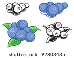 blueberries | Shutterstock .eps vector #92803435
