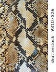 snake skin pattern background | Shutterstock . vector #93107326