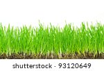 lawn | Shutterstock . vector #93120649
