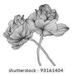 hand drawn decorative roses for ... | Shutterstock . vector #93161404