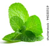 mint leaf close up on a white... | Shutterstock . vector #94030519