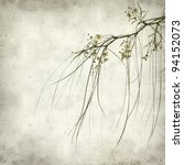 Small photo of textured old paper background with flowering Parkinsonia aculeata