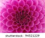 Abstract Flower And Beautiful...