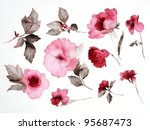 Stock photo color illustration of flowers in watercolor paintings 95687473