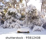 Snow Covered Forest With Bench...