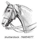 Horse Head   Vintage...