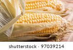Closeup on raw corn - stock photo