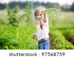 Adorable little girl picking carrots in a garden - stock photo