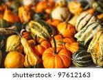 Pumpkins And Squash At Farmers...