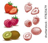Strawberry, Raspberry And Kiwi. Vector illustration. - stock photo