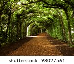 walkway with trees - stock photo