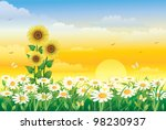 Field Of Daisies On A Sunny Day